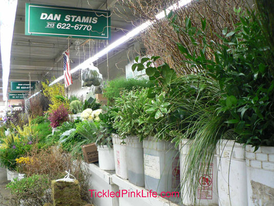 Los Angeles and Southern California Flower Markets-Dan Stamis greens and foliage