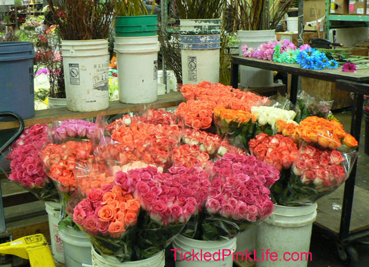 Los Angeles and Southern California Flower Markets-carnations