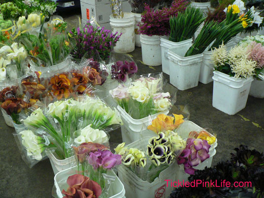 Los Angeles and Southern California Flower Markets-callas