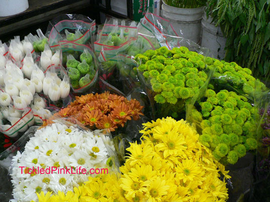 Los Angeles and Southern California Flower Markets-Teds Evergreens-mums