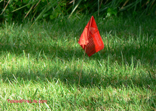 red irrigation flag on green grass