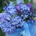 Thumbnail image for 31 Days: Blue Delphinium Bouquet {Day 8}
