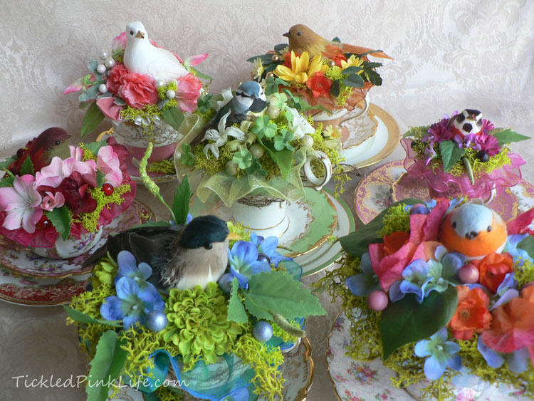 teacup bird nests
